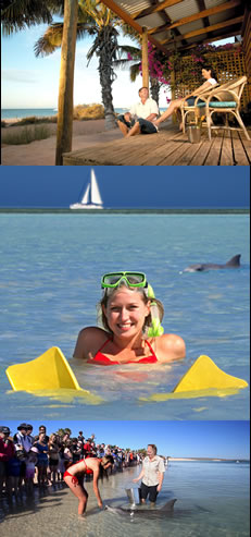 Monkey Mia Dolphin Resort - Accommodation 4U